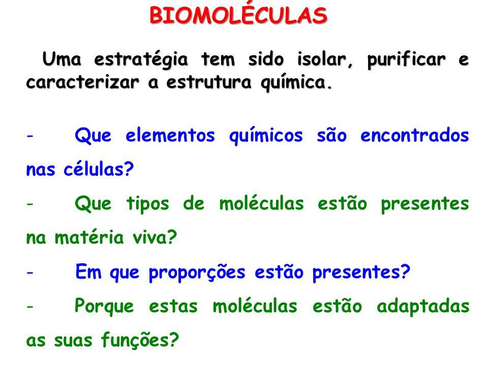 BIOMOLÉCULAS Uma estratégia tem sido isolar, purificar e caracterizar a estrutura química. Que elementos químicos são encontrados nas células