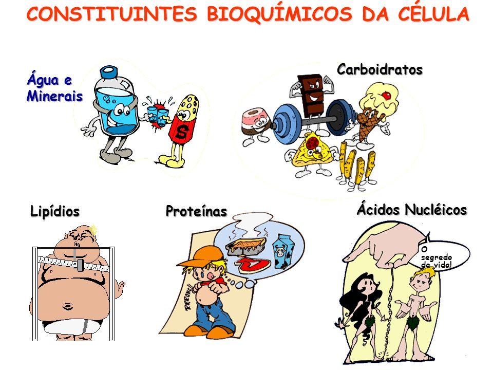 CONSTITUINTES BIOQUÍMICOS DA CÉLULA
