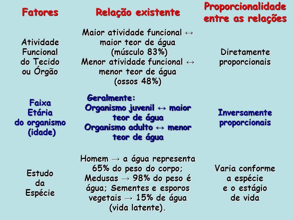 Fatores Relação existente Proporcionalidade entre as relações