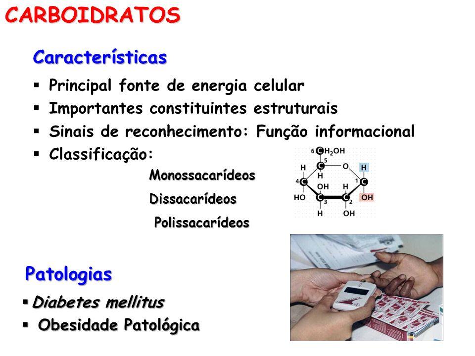 CARBOIDRATOS Características Patologias