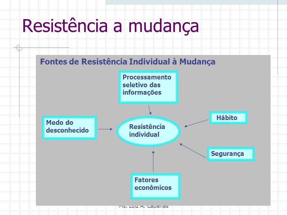 Resistência a mudança Processamento seletivo das informações