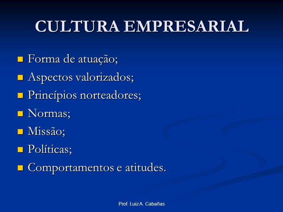CULTURA EMPRESARIAL Forma de atuação; Aspectos valorizados;