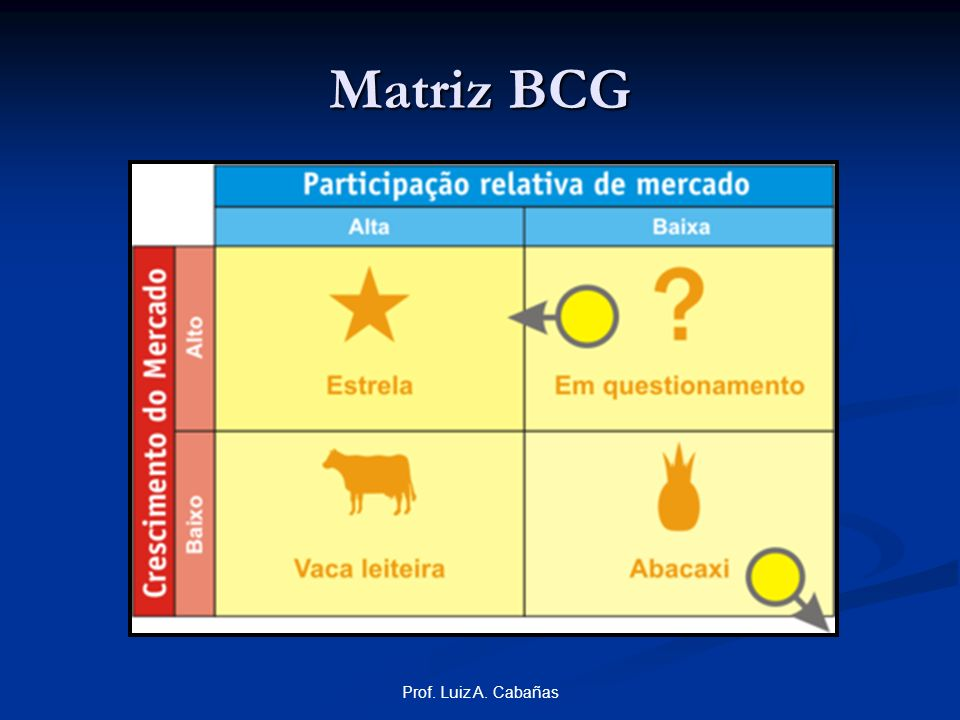 Matriz BCG Prof. Luiz A. Cabañas