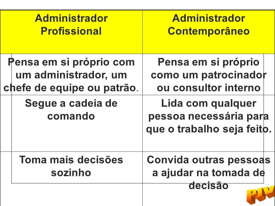 Administrador Profissional Administrador Contemporâneo