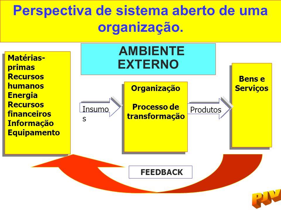 Perspectiva de sistema aberto de uma organização.