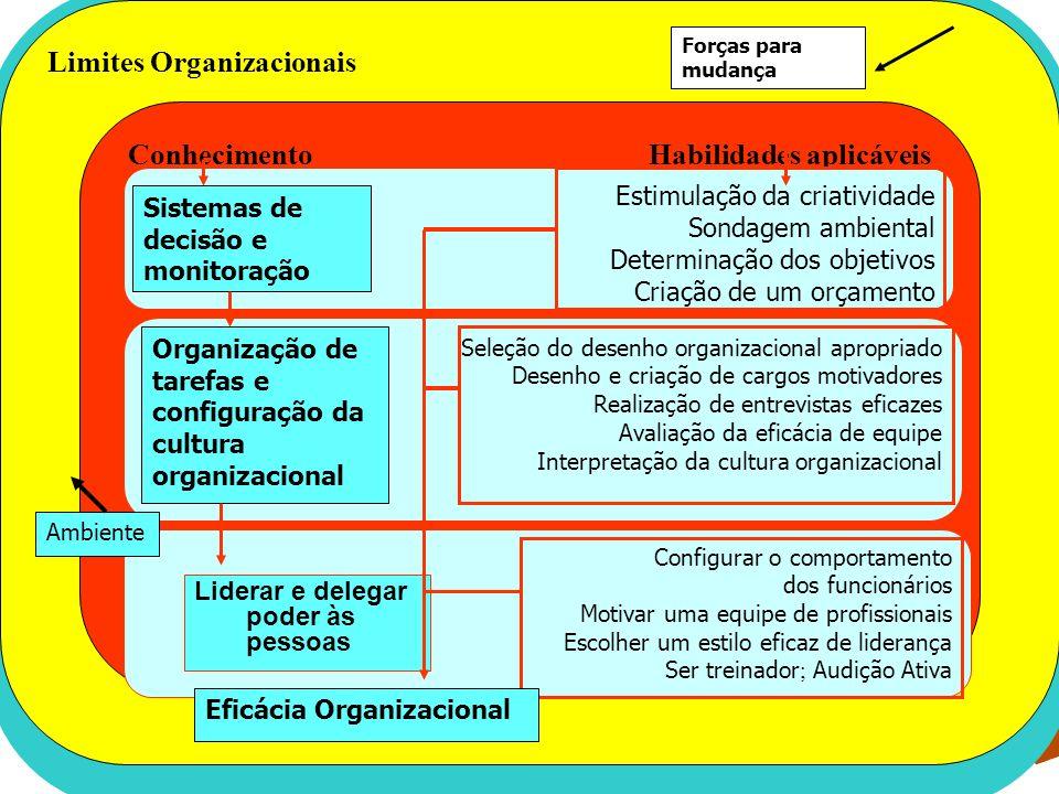 Conhecimento Competências Gerenciais Habilidades aplicáveis