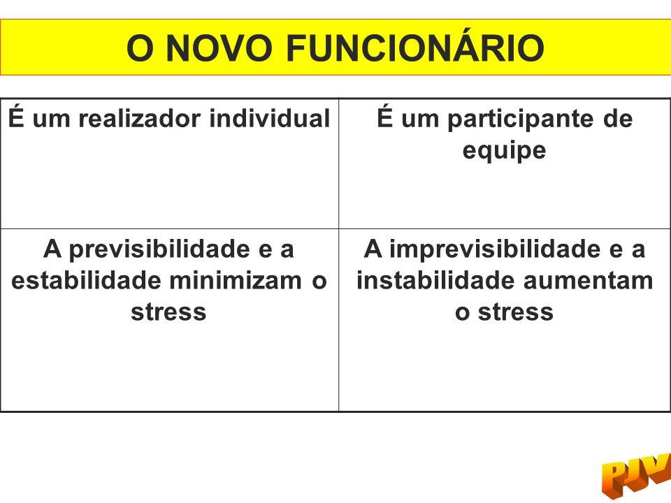 O NOVO FUNCIONÁRIO É um realizador individual