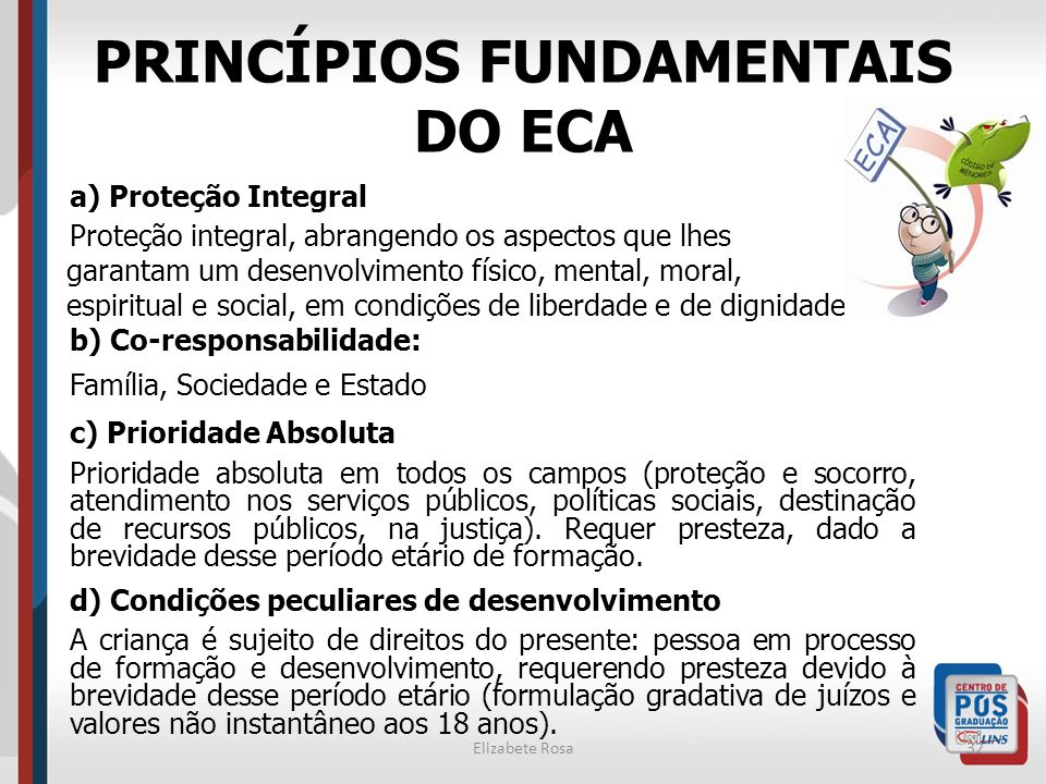 PRINCÍPIOS FUNDAMENTAIS DO ECA