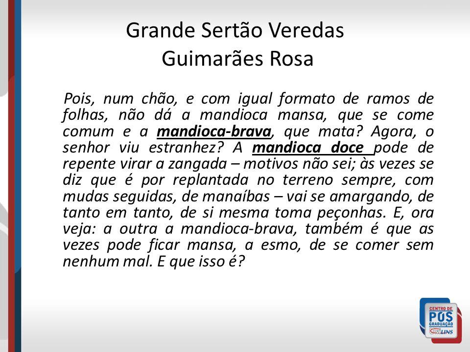 Grande Sertão Veredas Guimarães Rosa