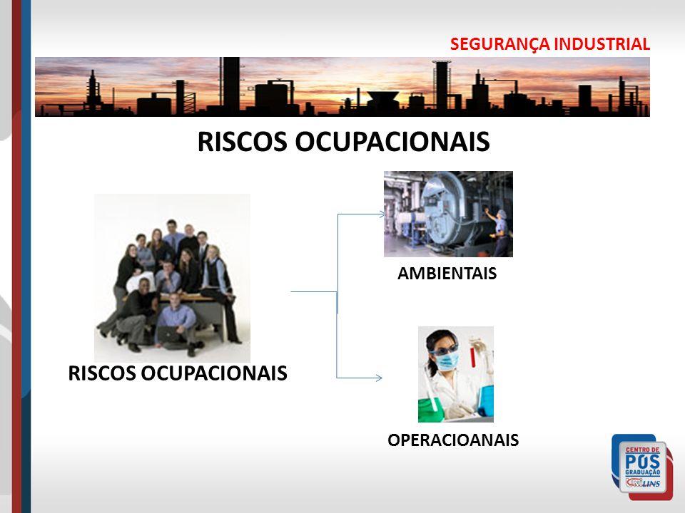 RISCOS OCUPACIONAIS RISCOS OCUPACIONAIS SEGURANÇA INDUSTRIAL