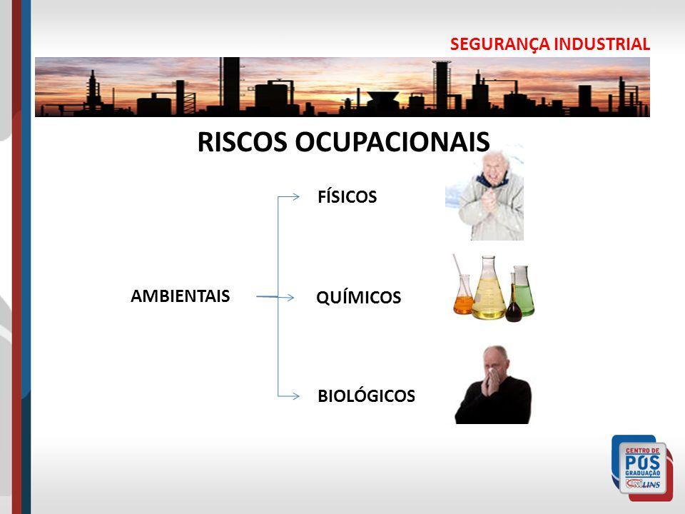RISCOS OCUPACIONAIS SEGURANÇA INDUSTRIAL FÍSICOS AMBIENTAIS QUÍMICOS