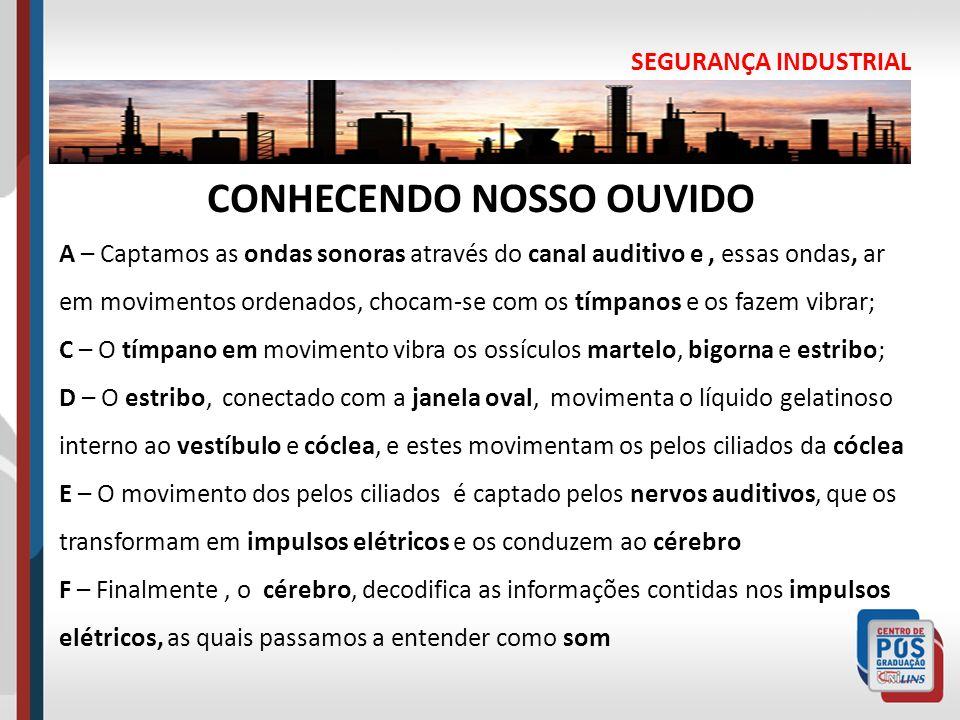 CONHECENDO NOSSO OUVIDO