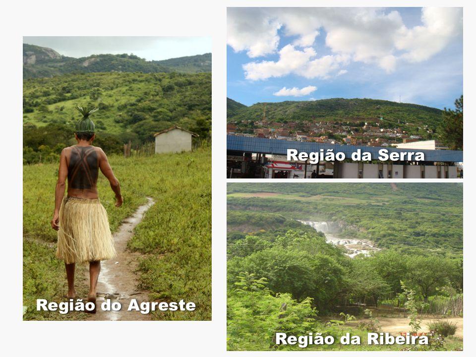 Região da Serra Região do Agreste Região da Ribeira