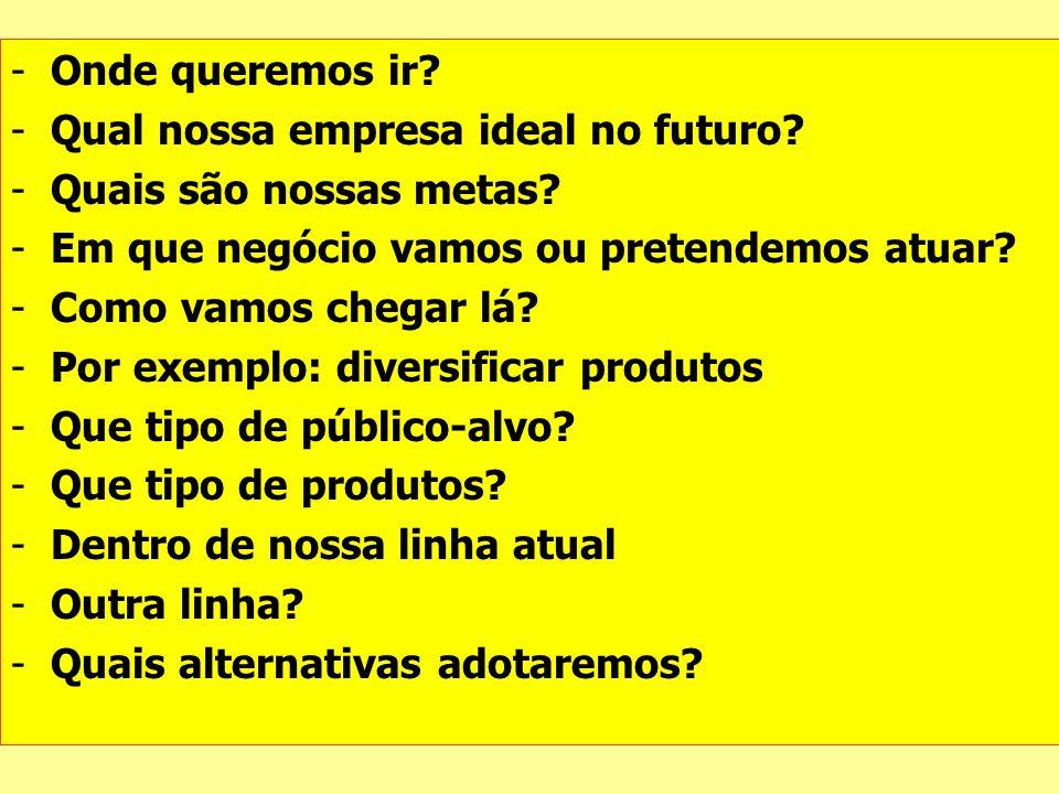 Onde queremos ir Qual nossa empresa ideal no futuro Quais são nossas metas Em que negócio vamos ou pretendemos atuar