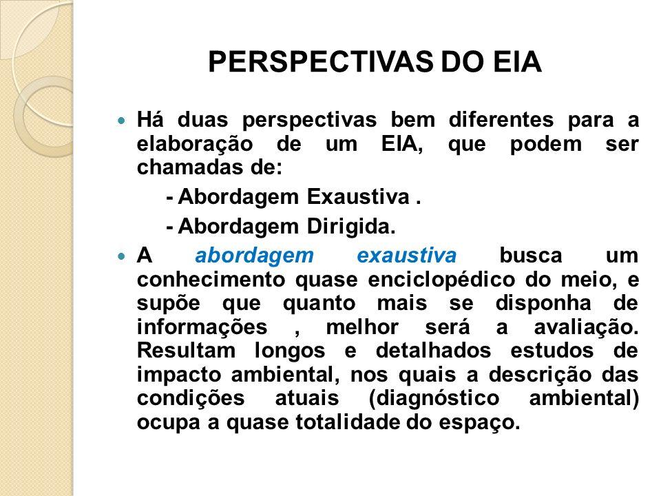 PERSPECTIVAS DO EIA Há duas perspectivas bem diferentes para a elaboração de um EIA, que podem ser chamadas de: