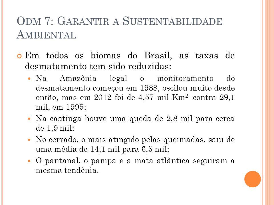 Odm 7: Garantir a Sustentabilidade Ambiental