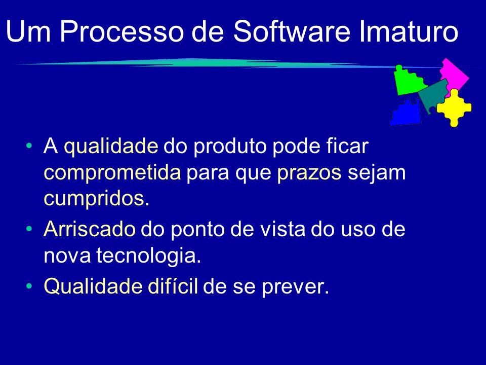 Um Processo de Software Imaturo