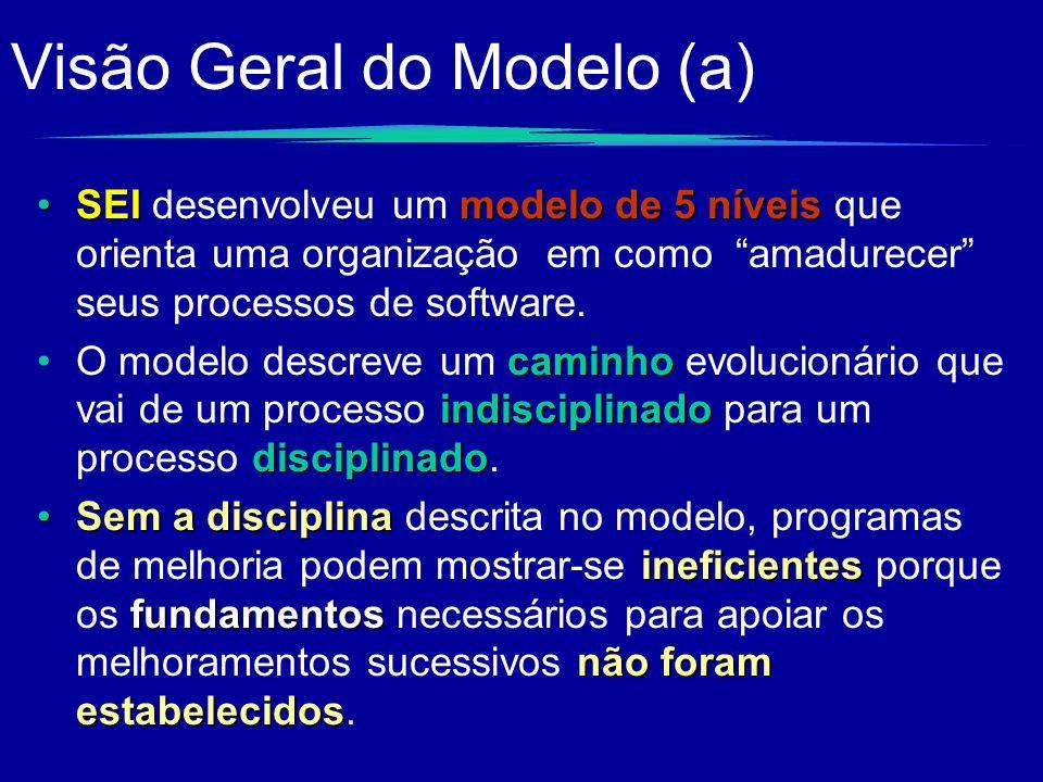 Visão Geral do Modelo (a)
