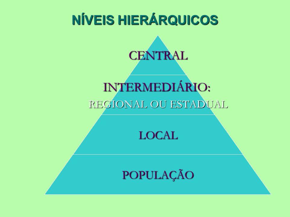 NÍVEIS HIERÁRQUICOS