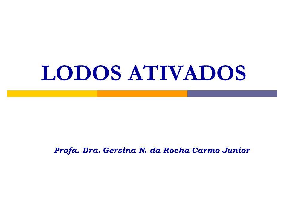 Profa. Dra. Gersina N. da Rocha Carmo Junior