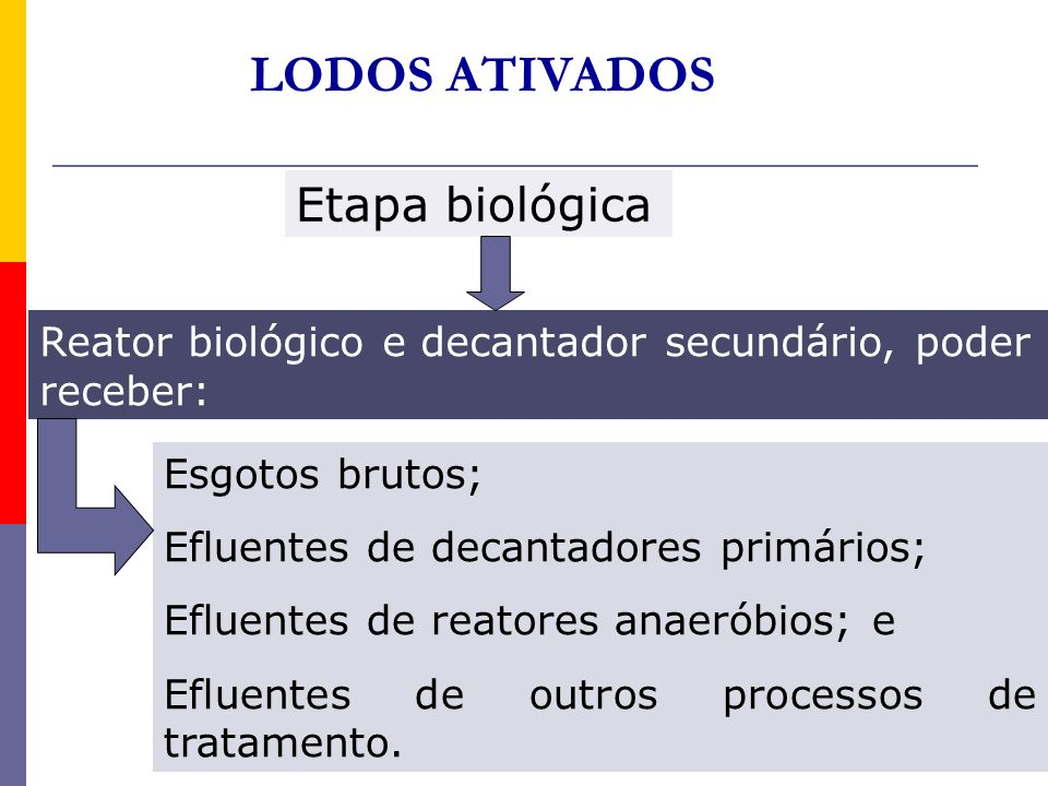 LODOS ATIVADOS Etapa biológica