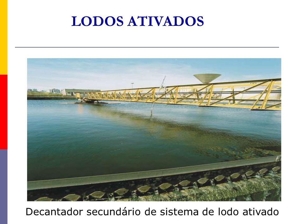 LODOS ATIVADOS Decantador secundário de sistema de lodo ativado
