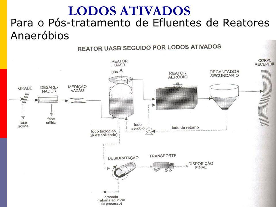 LODOS ATIVADOS Para o Pós-tratamento de Efluentes de Reatores Anaeróbios