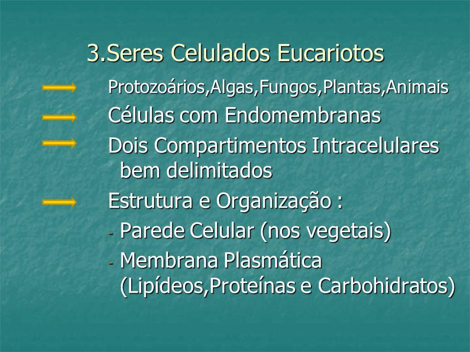 3.Seres Celulados Eucariotos