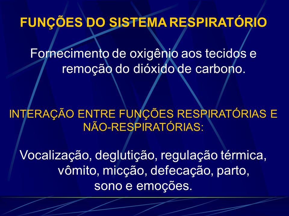 FUNÇÕES DO SISTEMA RESPIRATÓRIO