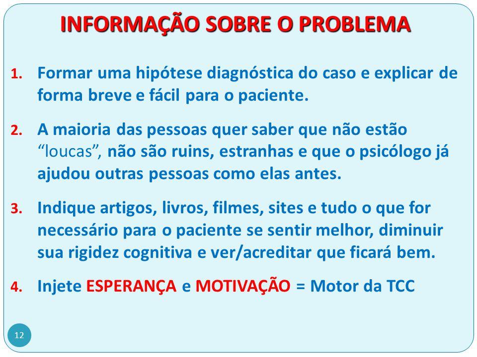 INFORMAÇÃO SOBRE O PROBLEMA