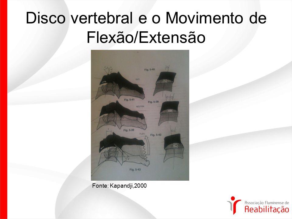 Disco vertebral e o Movimento de Flexão/Extensão