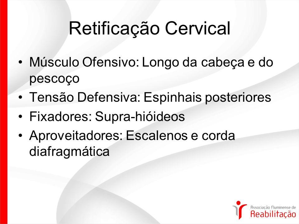 Retificação Cervical Músculo Ofensivo: Longo da cabeça e do pescoço