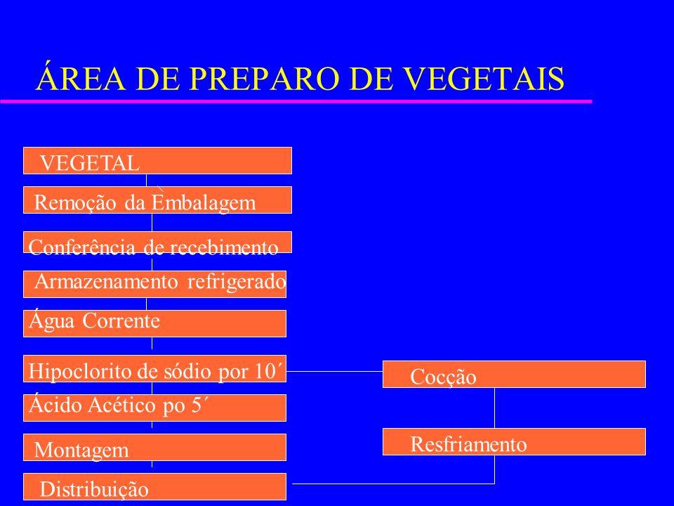 ÁREA DE PREPARO DE VEGETAIS