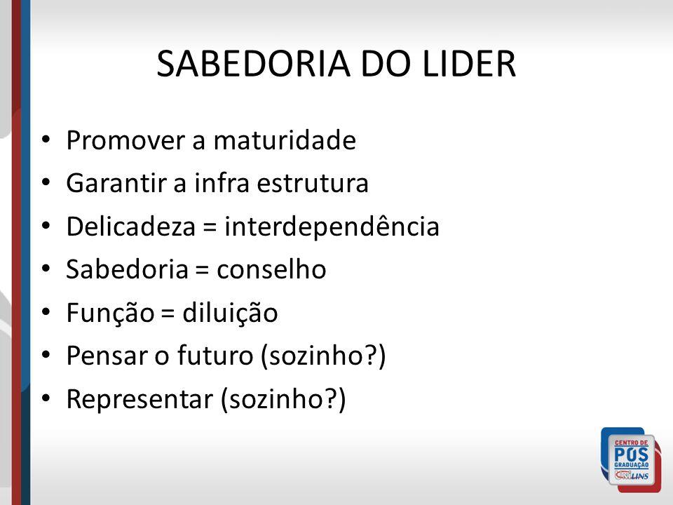 SABEDORIA DO LIDER Promover a maturidade Garantir a infra estrutura