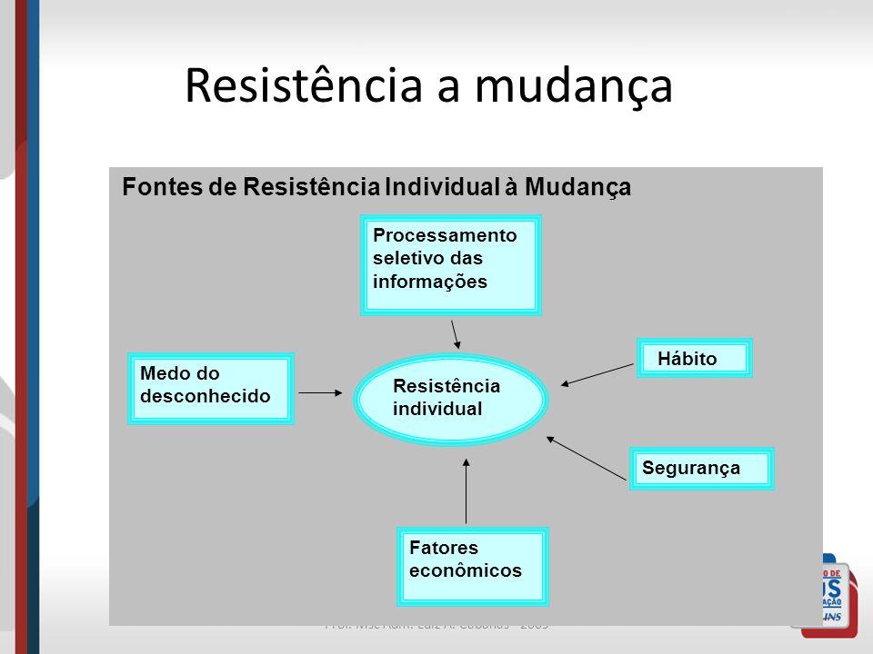 Prof. Msc Adm. Luiz A. Cabañas - 2009