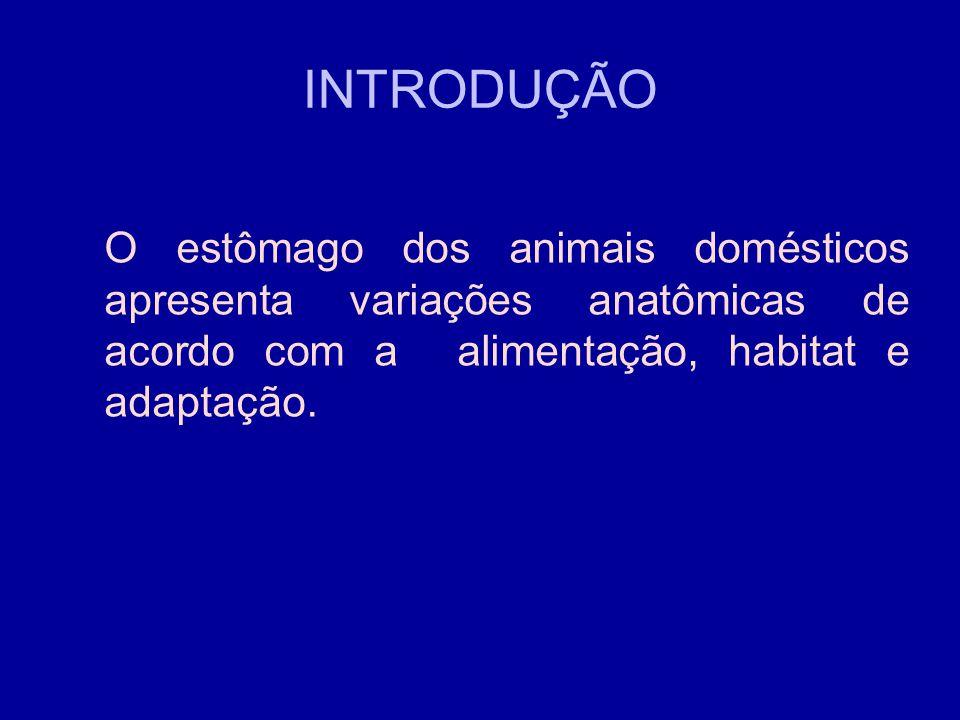 INTRODUÇÃO O estômago dos animais domésticos apresenta variações anatômicas de acordo com a alimentação, habitat e adaptação.