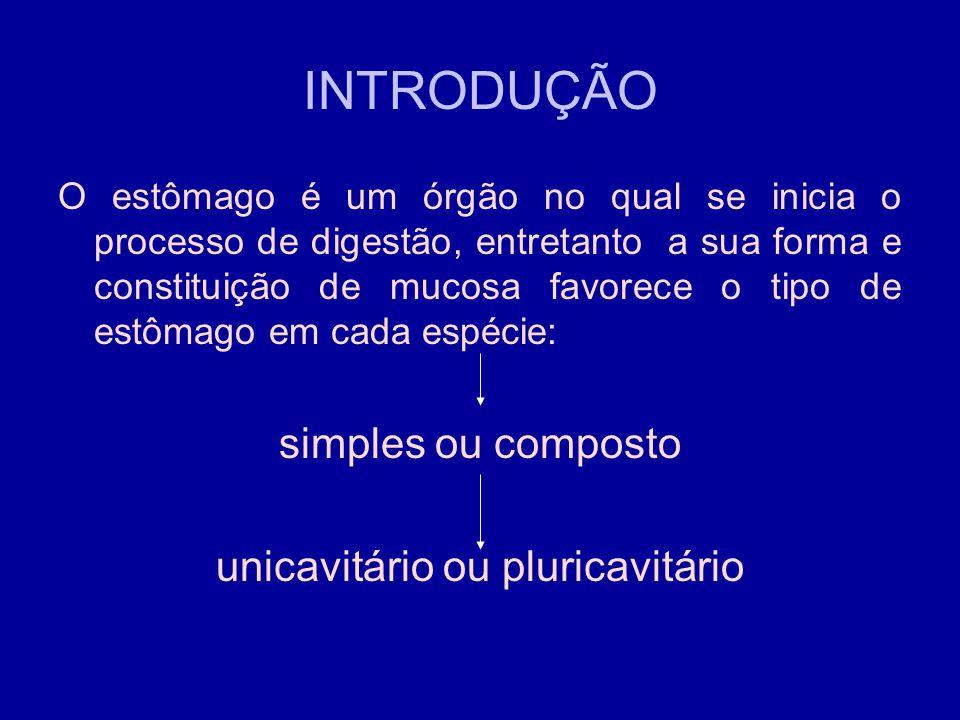 unicavitário ou pluricavitário