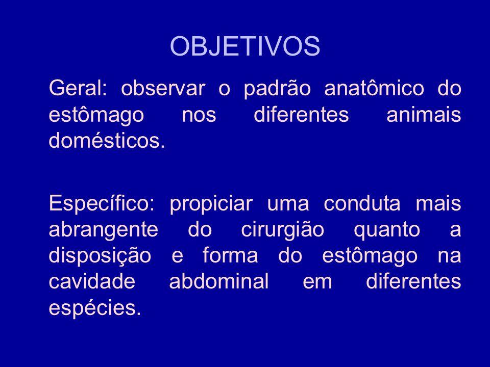 OBJETIVOS Geral: observar o padrão anatômico do estômago nos diferentes animais domésticos.