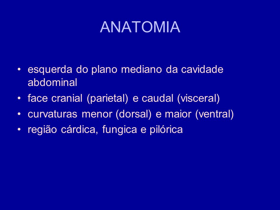 ANATOMIA esquerda do plano mediano da cavidade abdominal