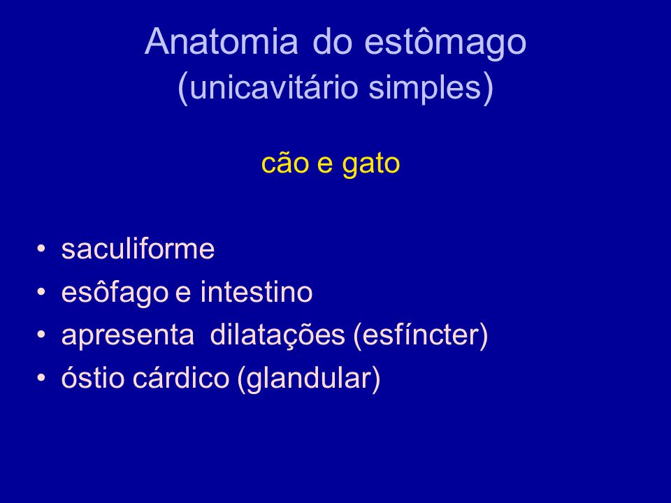 Anatomia do estômago (unicavitário simples)