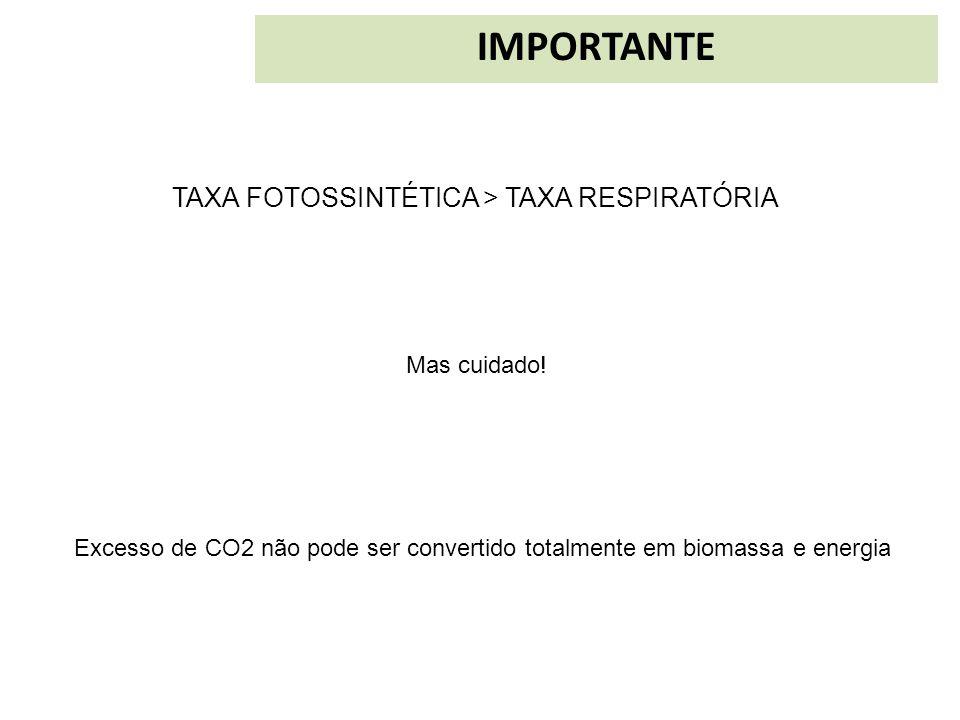 IMPORTANTE TAXA FOTOSSINTÉTICA > TAXA RESPIRATÓRIA Mas cuidado!