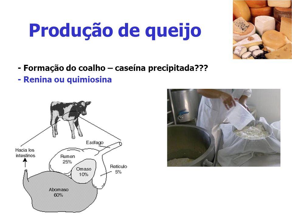 Produção de queijo - Formação do coalho – caseína precipitada