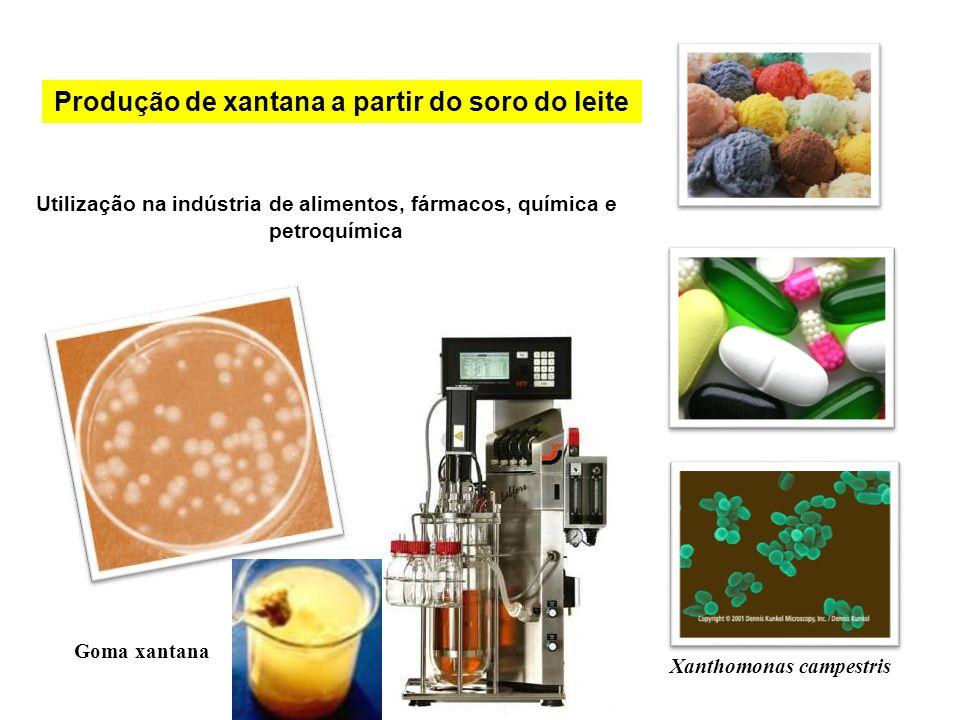 Produção de xantana a partir do soro do leite