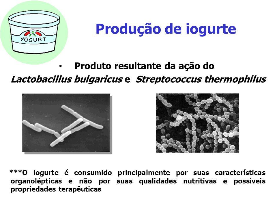 Produção de iogurte Produto resultante da ação do