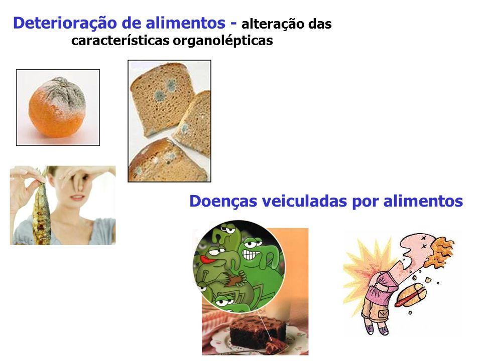 Doenças veiculadas por alimentos
