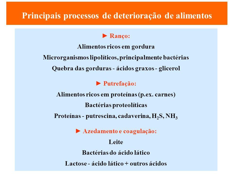 Principais processos de deterioração de alimentos