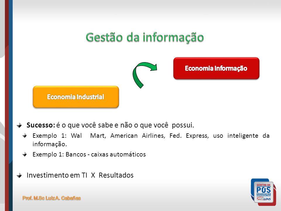 Gestão da informação Economia Informação. Economia Industrial. Sucesso: é o que você sabe e não o que você possui.
