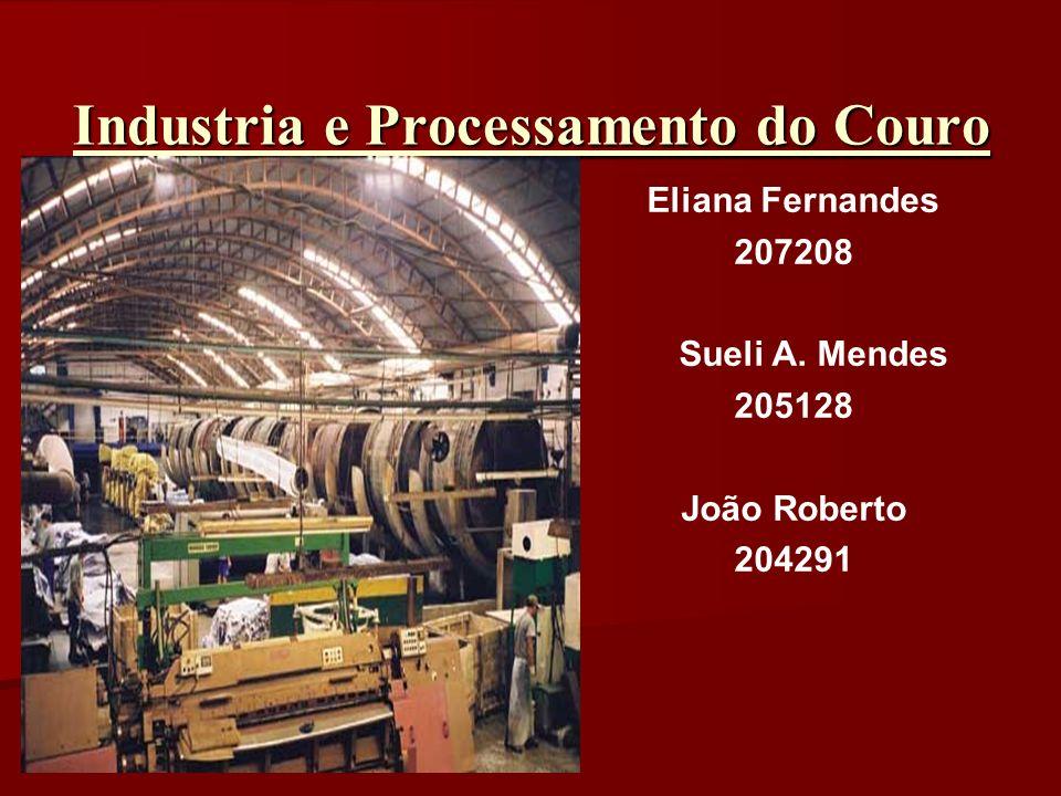 Industria e Processamento do Couro