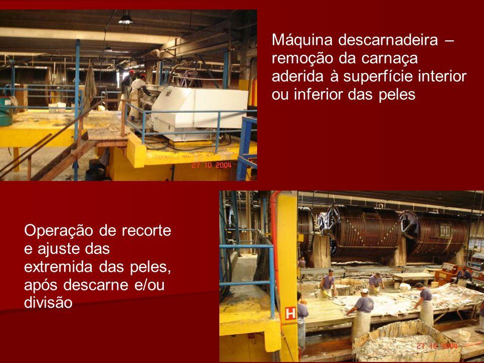 Máquina descarnadeira – remoção da carnaça aderida à superfície interior ou inferior das peles