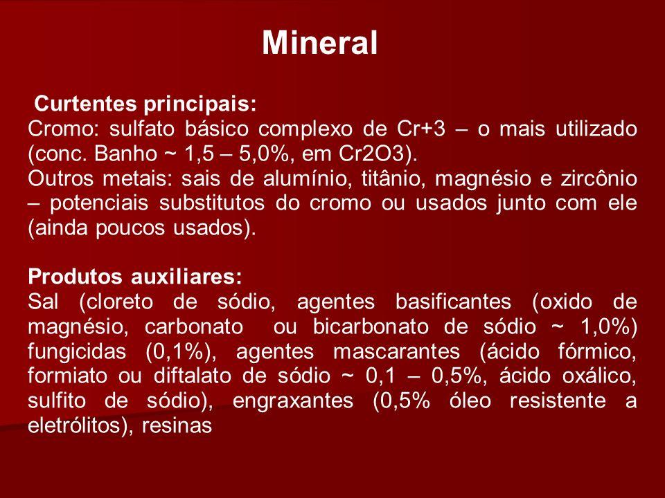 Mineral Curtentes principais: